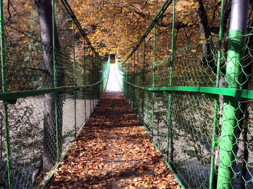 Мост через реку Белая в Адыгее