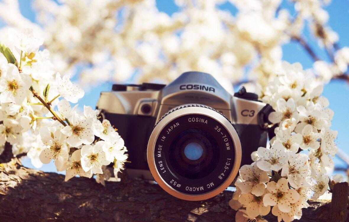 Успей стать победителем фото-блица «Весна»!