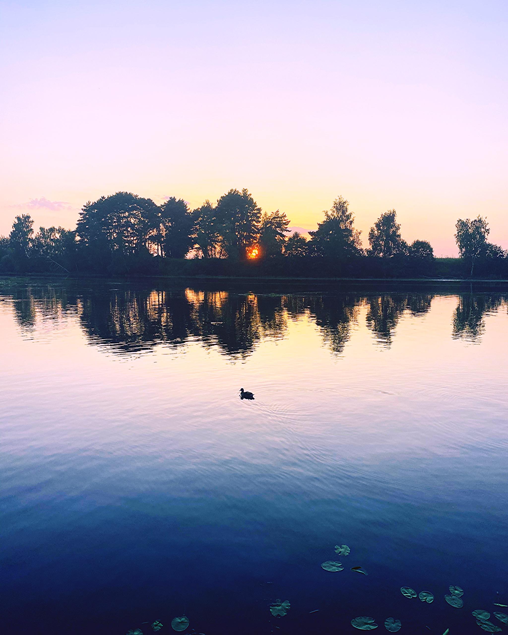 Вечернее спокойствие природы