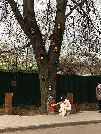 дерево с окошками