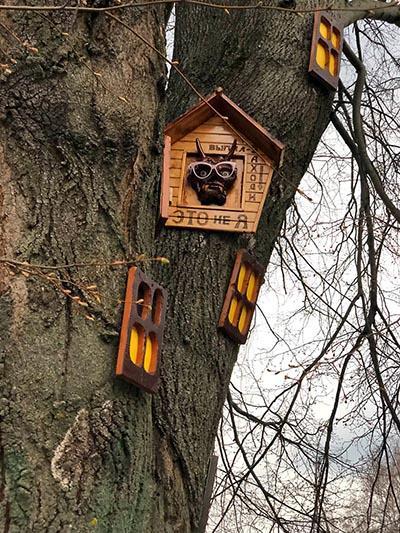 дерево с окошками1