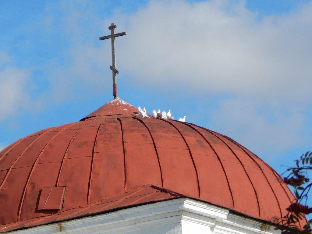 Гост.купол